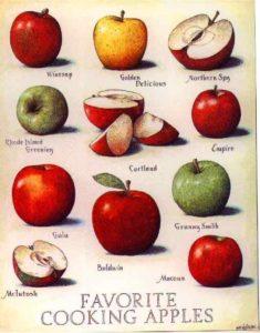 Tipos de maçã
